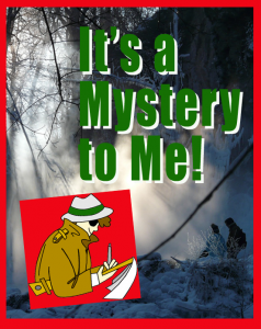 It's a Mystery to Me! Guest Post on Minds in Bloom