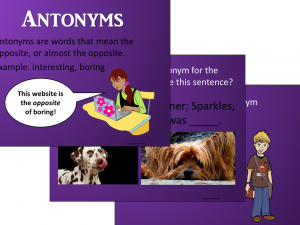 Shades of Meaning Package - PowerPoint Samples