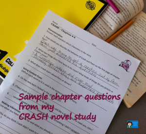 Crash - Sample chapter questions