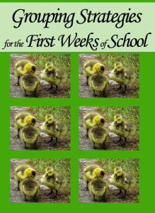 Grouping Strategies for the First Weeks of School