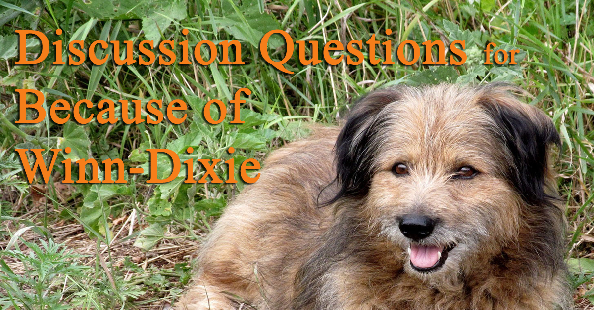 discussion-questions-for-because-of-winn-dixie