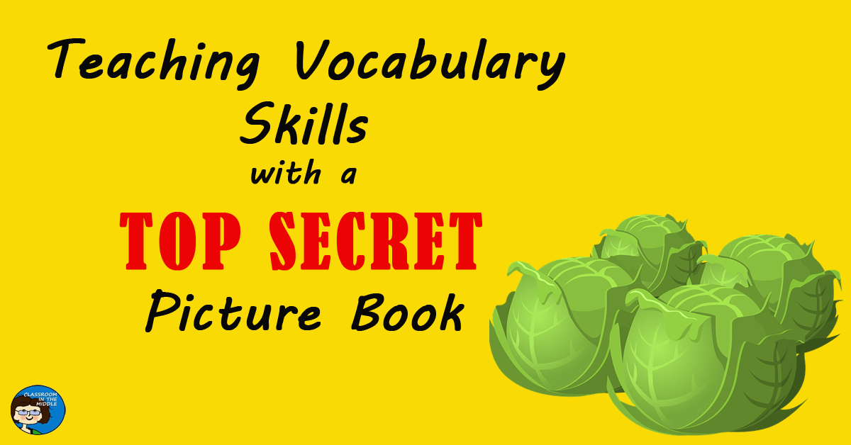 teaching-vocabulary-skills-with-a-top-secret-picture-book-fb