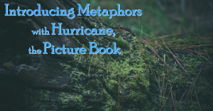 Introducing Metaphors with Hurricane fb
