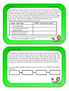 Spring task cards samples