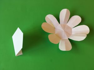 Arrow and Petal Foldables
