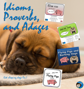 Idioms,Proverbs, and Adages pin