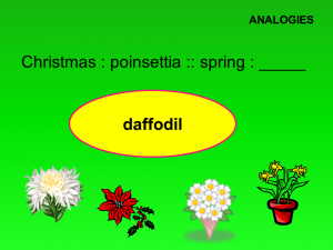 Spring Word Puzzles slide 4