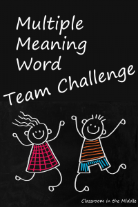 Multiple Meaning Word Team Challenge pin