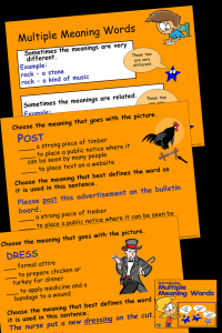 Multiple Meaning Words NEW- pin
