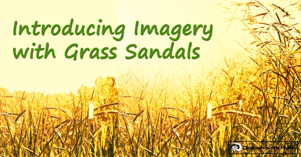 Introducing Imagery with Grass Sandals