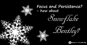 Focus and Persistence - How about Snowflake Bentley