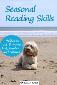 Seasonal Reading Skills - summer pin