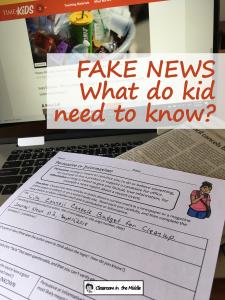 Fake News pin