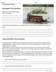 Text Structure Free Activity Sheet Set